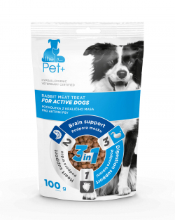 For Active Dogs